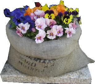 花壇1.jpg